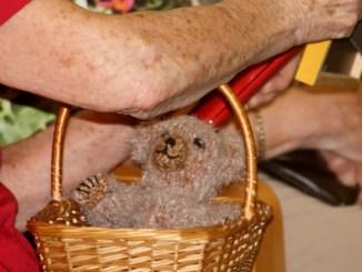 Auch Großmütter hegen Teddybären. Foto: Janette Bürkle