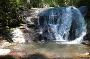 Falls at West Montgomery Creek