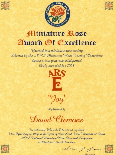 ARS Miniature Rose Award of Excellence for Joy hybridized by David Clemons