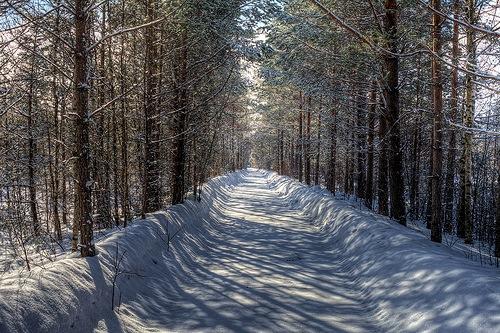 Zimski put u Finskoj - Sami via Flickr (CC BY-NC 2.0)