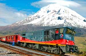 1-cruise-train-350