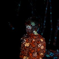 Esther Traugot_FoweredForest(in reds)