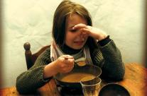 Fête de la Soupe – 2011 (Projet non retenu)