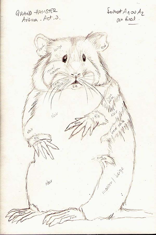 grand hamster croquis