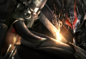 Berseker Armour - Berserk Musou