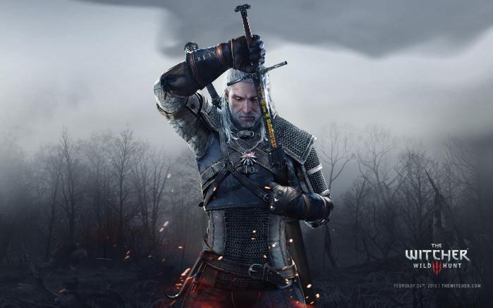 The Witcher 3 Wild Hunt-GAMERSRD