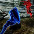 Dark Souls II_Covenant_BlueSentinel