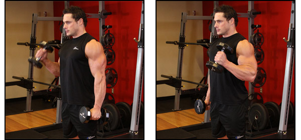 Dumbbell Hammer Curl - Click for instructions