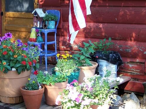 Container Garden Watering tips