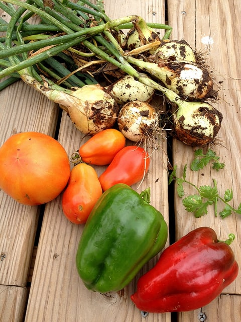 Plant a Salsa Garden: The Five Ingredients to Grow for Fresh Garden Salsa