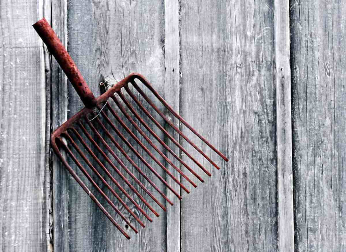 5 Amazing Ways to Repurpose Garden Tools