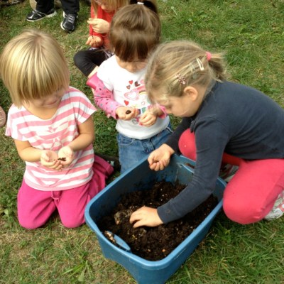 Gardening With Kids: From Seed to Table