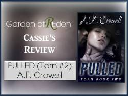pulled torn review photo
