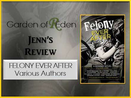 felony ever after review photo