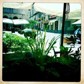 Piazza, Tropea