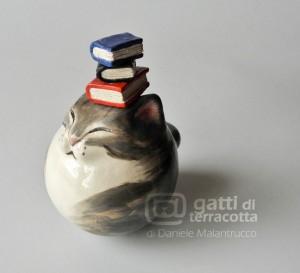 grigetto con libri