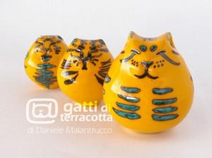 tigrati giallo verdi