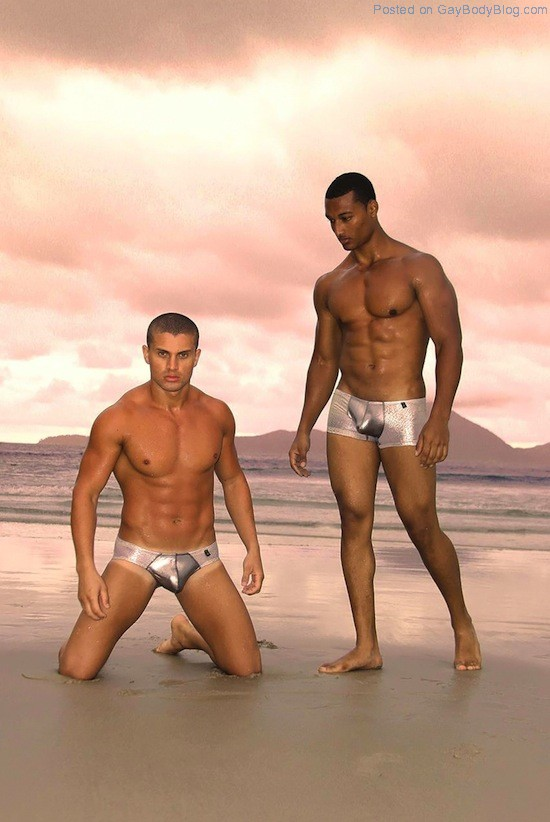 Shiny Bulges Hunks In Underwear 5 Shiny Bulges   Hunks In Underwear