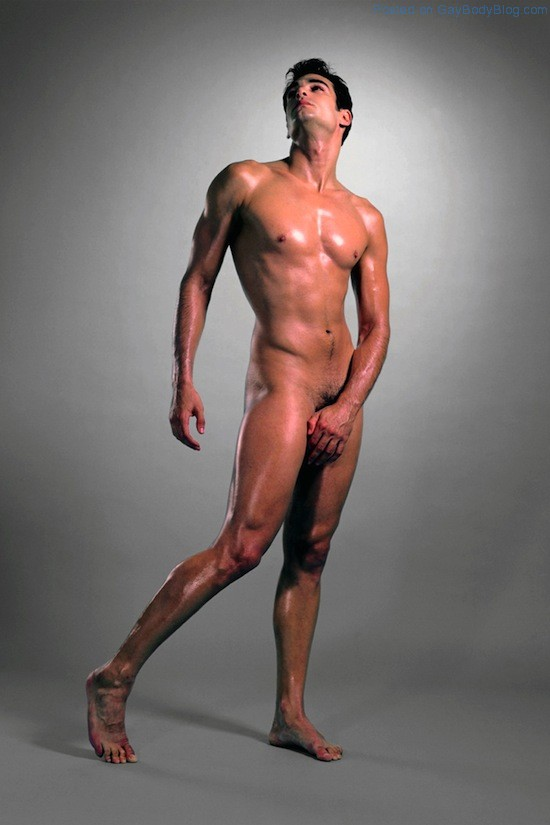 The Artistic Male Nude 3 The Artistic Male Nude