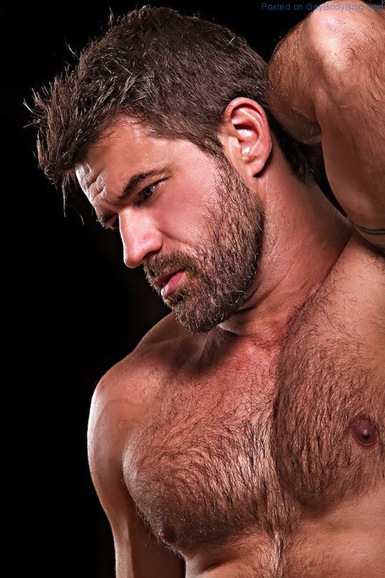 Masculine And Hairy Hunk Fabricio Ternes 5 Masculine And Hairy Hunk Fabricio Ternes