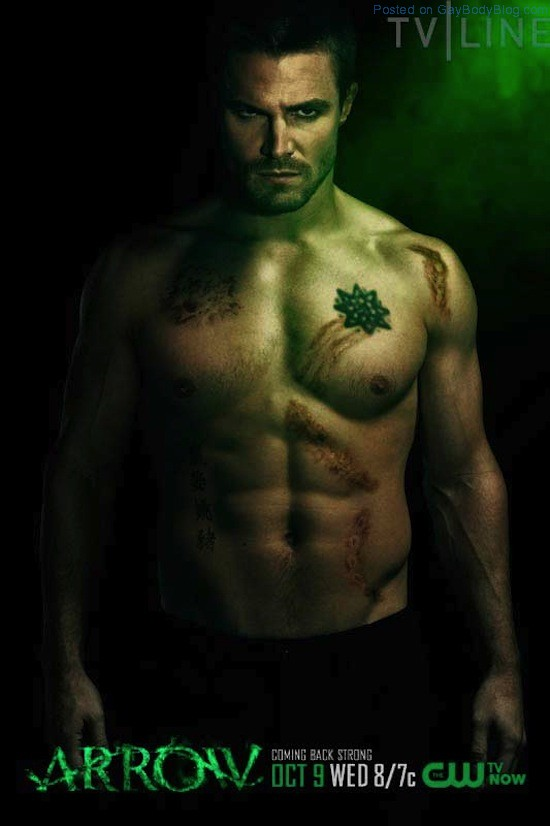 A Shirtless Stephen Amell 3