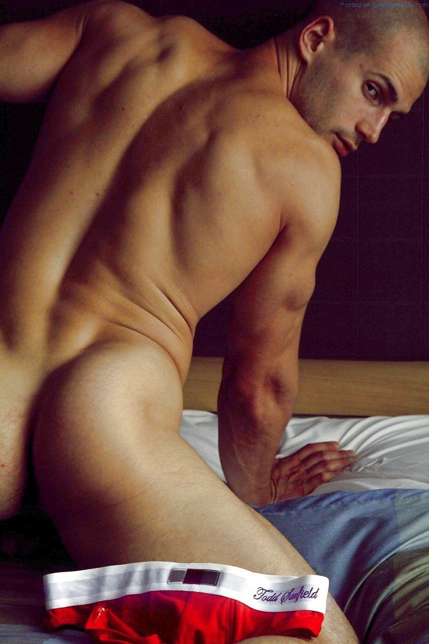 http://i1.wp.com/www.gaybodyblog.com/wp-content/uploads/2013/12/Todd-Sanfield-Showing-Some-Cock-Again-1.jpg