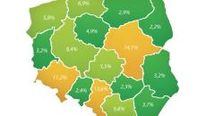 wykres_Rozklad-zapytan-o-budowe-domow-w-Polsce