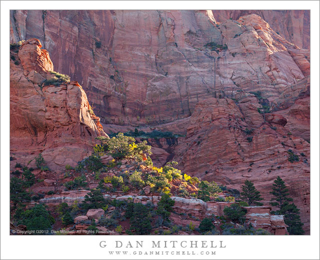 First Light, Red Rock Cliffs