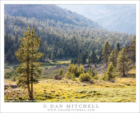 Eastern Sierra Valley, Afternoon Light