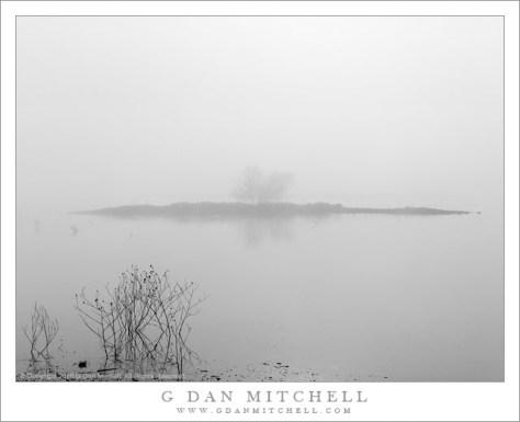 Winter Fog, Water, Island
