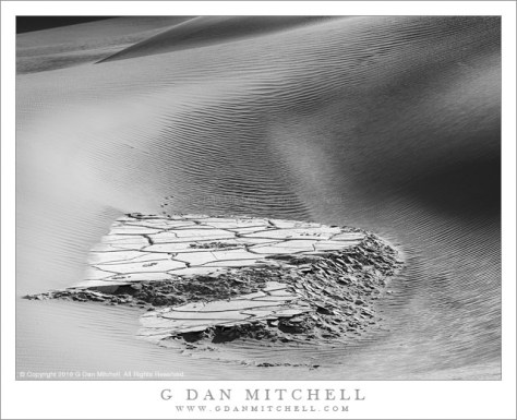 Exposed Playa, Dunes