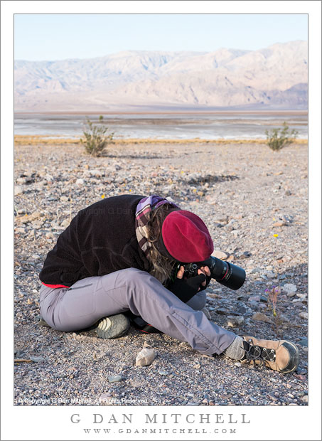 Macro Photographer, Death Valley