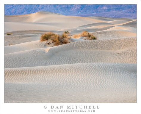 Evening Dunes and Mountains