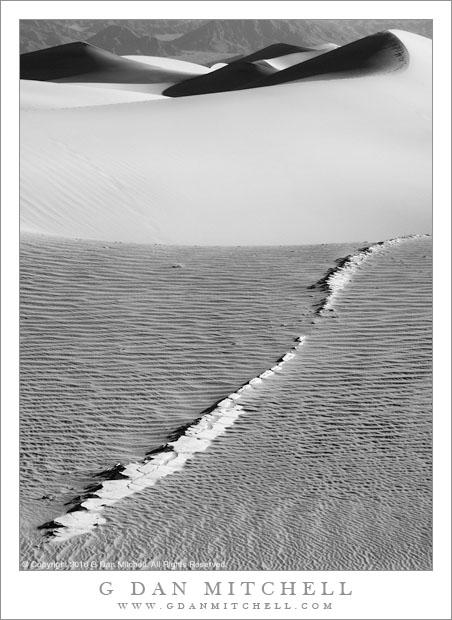 Dunes Interrupted