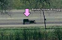 Horse and Carriages (or Buggy) in Google Earth