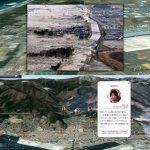 The Great East Japan Earthquake Big Data Workshop