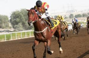 Treble Jig: big in Dubai
