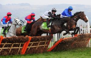Can Hurricane Fly regain the Champion Hurdle?