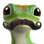 geckostache