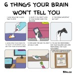 6-things-your-brain-wont-tell-you