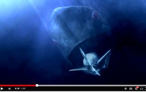 MONSTER vs. MACHINE: Mega Shark vs. Mecha Shark [Video]