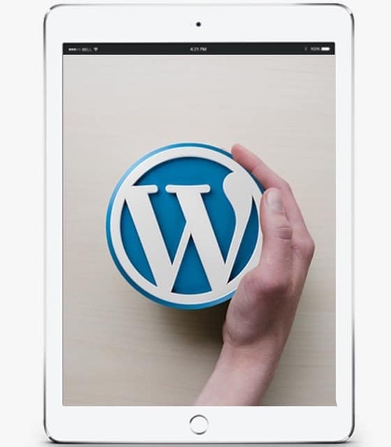 WordPress Web Design Cork