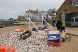 ostriche spiaggia whitstable kent