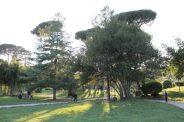 natura centro di roma