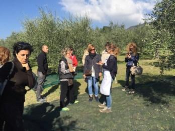 Corinna spiega come raccogliere le olive