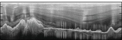 Images of the ice-covered Gamburtsev Mountains revealed water-filled valleys, as seen by the cluster of vertical lines in this image. Credit: Creyts
