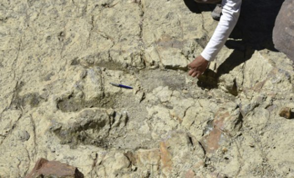 Following dinosaur footsteps-GeologyPage