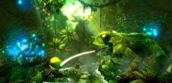 Trine 2 Wii U (2)