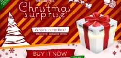 se_christmassurprise