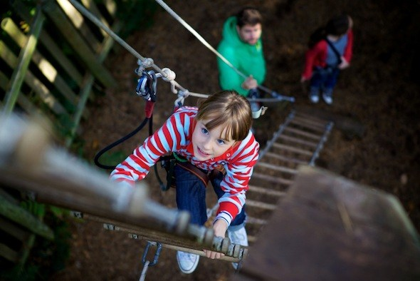 Go Ape in the Forest of Dean